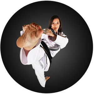 Martial Arts Steel City ATA Adult Programs